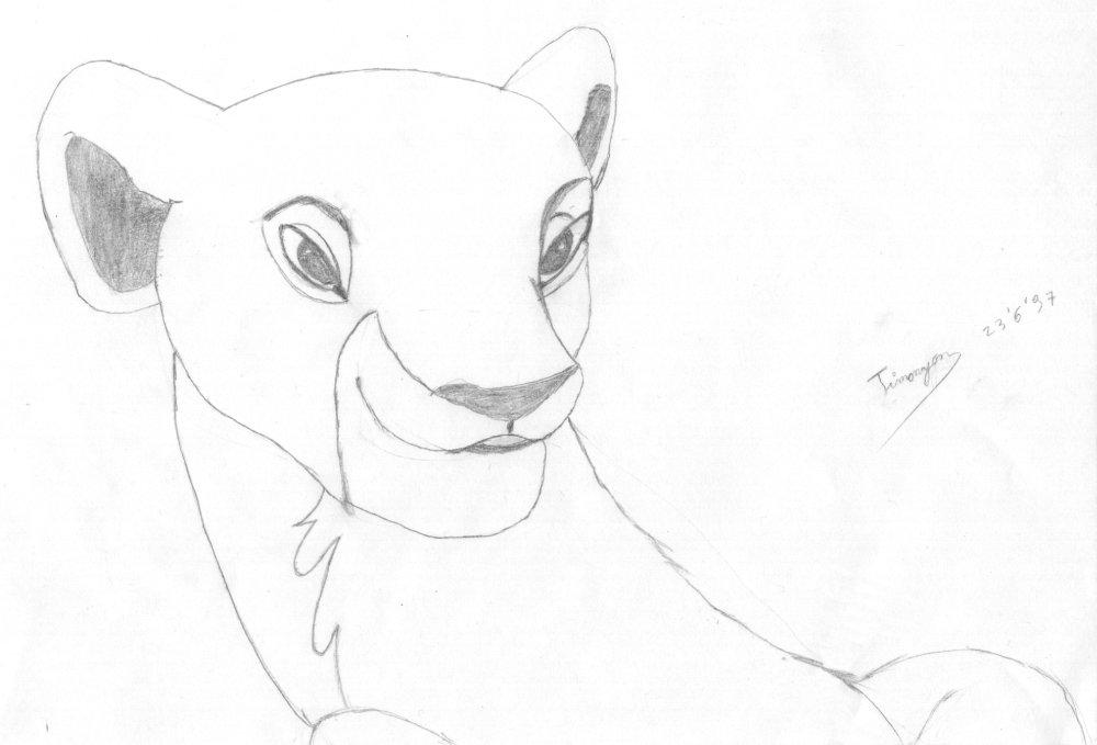 The Lion King Simba And Nala Drawings How Draw Simba Lion King